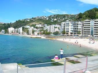 View of Wellington;'s Oriental Parade.