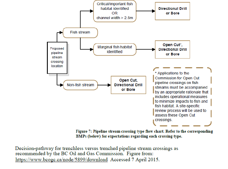 Decision pathway for salmon stream crossings